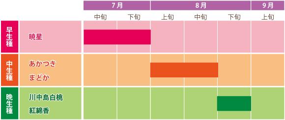 桃のカレンダー